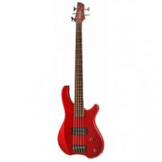 Бас-гитара FERNANDES Tremor 5X MTR