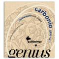 Струны для классической гитары GALLI Genius Carbonio GR90 Hard Tension