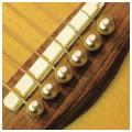 Шпильки для гитары, набор D'ANDREA Dot TP4T