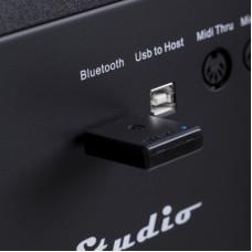 Bluetooth приемник для цифровых пианино Orla BT1